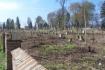 Cmentarz w Zdołbunowie 2008