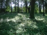 Rzesznikowo :: Rzesznikowo, miejsce po dawnym cmentarzu