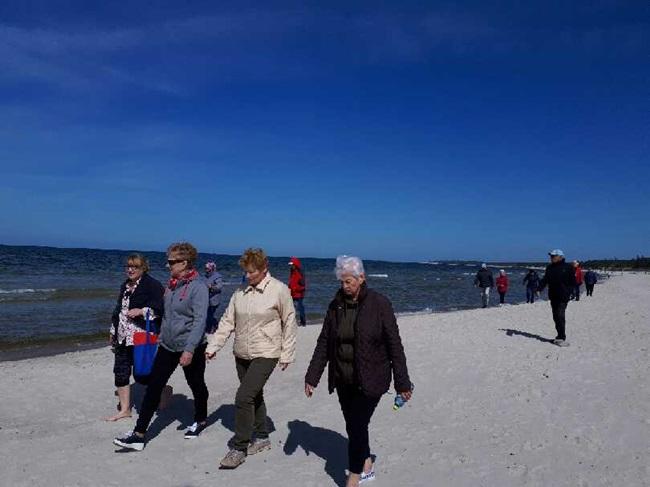 Oglądasz obraz z artykułu: Majówka u Seniorów z Rymania
